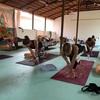 【インドでヨガリトリート】練習プログラム内容と、ゴアのビーチの様子をご紹介★
