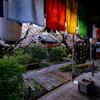京都・西陣 - 歓喜桜散る 雨あがりの雨宝院