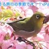 そろそろ旅行の季節です!!<Part3> (It is the season of travel !! <Part3>)
