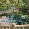 双子池(大阪府吹田)