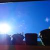 太陽キャッチ!