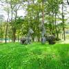 大自然に囲まれた公園【白馬グリーンスポーツの森】