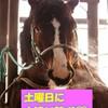 【自信の軸馬】【午前中は複勝転がし】土曜日に小遣い稼ぎ!