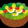 サラダとは何か・サラダの定義について。適当に野菜を切って盛っておけば良いの?
