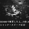 【江ノ島水族館】都会好きの札幌市民が四六時中心地良かった首都圏1人旅 part13