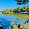 鷺池(奈良県奈良)