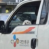 韓国でとある犬が名誉配達員に!
