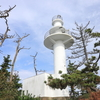 「おかえりモネ」の舞台を訪ねて (2)気仙沼大島・龍舞崎へ