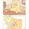ネコノヒー「豆」