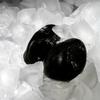 ダンディーなタキシード氷 映画メン・イン・ブラック 写真の暗明の難しさ