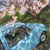 桜とパオ2019、②