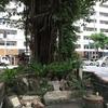 壺屋やちむん通り界隈・2 沖縄県那覇市壺屋