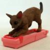 チョコエッグのペット大好き 猫 プレミアランキング