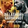 UFC227 感想