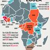 (疫病の歴史)エボラウイルスって何?