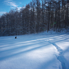 朝の雪 夕の雪