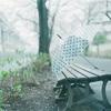 雨の日を楽しむ方法 〜インドア生活〜