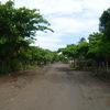 2010年 世界遺産 失われた都市 レオン・ビエッホ世界遺産