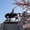 桜巡り  9 今治城