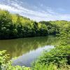 大明神池(和歌山県海南)