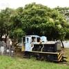 南大東島でサトウキビを運んでいた機関車 那覇市壺川東公園