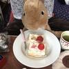 ラビットちゃんのお誕生日!誕生日ケーキ