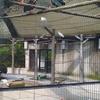 続・野毛山動物園に行って来ました。