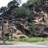 国指定天然記念物、虫に喰われたかのような岩