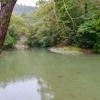 西湖(香川県高松)