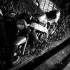 Photorecording #219 廃バイク