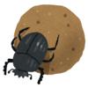 昆虫の巧みな暮らし