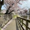ぽち旅 Part7 石川県 お花見編