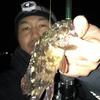 メバル・カサゴ 根魚調査 岡崎大樹寺店