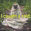 風邪のひき始めにするべきいくつかの事。