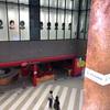 「レイヤードミヤシタパーク」は渋谷の宮下公園跡地の新名所