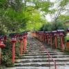 【貴船神社と兵衛カフェ】⛩京都のパワースポット貴船神社と気軽に楽しめる川床カフェ☕️