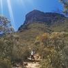 【ロードトリップ】西オーストラリア最高峰、ブラフ山登頂記録