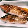 【旬は春〜夏!】キジハタ(アコウ)の刺身は本当に美味しい!【捌き方〜調理の注意点も!】