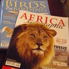 ケニアひとり旅③【機内食にカニ?ナイロビまで乗り継ぎ2回でもカタール航空は快適だった】
