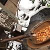 食い道楽ぜよニッポン❣️ 熊本 最強 黒川温泉 玉子❗️