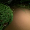 大雨で道路冠水!床下浸水の恐怖