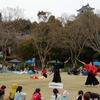 東京の浅草剣舞会エッジが浜松城公園さくらまつりに