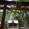 神社巡り 氷川女體神社