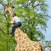 ハンブルグ動物園 Tierpark Hagenbeck (ハーゲンベック動物園)に行く。とっても魅力的です♪