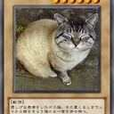 温和なボス猫のゲームブログ