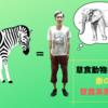 草食動物界の将軍こと象の歴史を草食系男子が解説!
