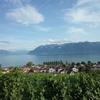 スイス観光記*フランス語圏の都市ローザンヌを観光した感想