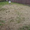 (買ってみた編)自分で施工できる、YouTenリアル人工芝。子供がのびのび走る庭へ