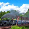 東武鉄道 SL大樹2・5号の撮影