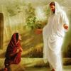 スワミジの言葉 イエスの生涯 新連載 12